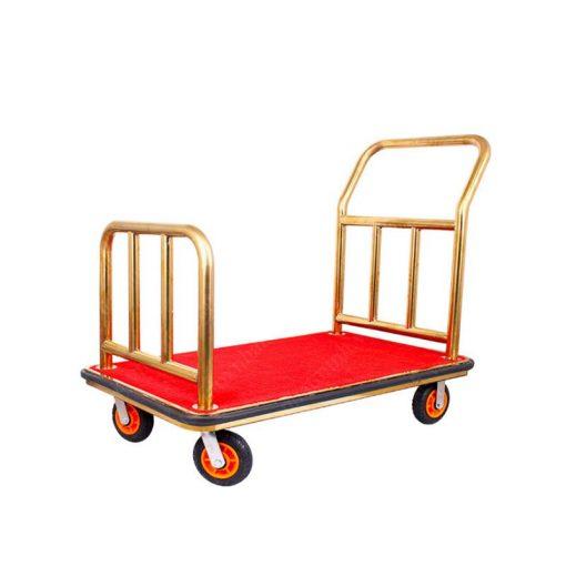 Xe đẩy hành lý chuyên dụng TS11X06-V